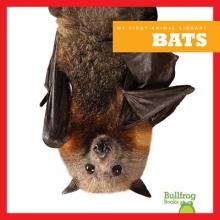Rustad, Martha E. H. Bats