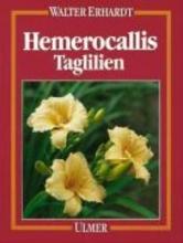 Erhardt, Walter Hemerocallis. Taglilien