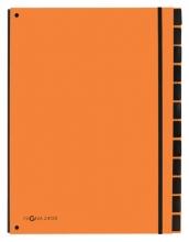 , Sorteermap Pagna Trend 12 tabs A4 oranje