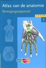 Werner  Platzer Sesam atlas van de anatomie deel 1 Bewegingsapparaat