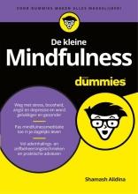 Shamash  Alidina De kleine Mindfulness voor Dummies