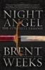 Weeks, Brent,Night Angel