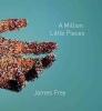 Frey, James,A Million Little Pieces