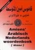 <b>Sharif Amien</b>,Amiens Arabisch Nederlands woordenboek middel