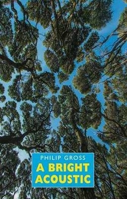 Philip Gross,A Bright Acoustic