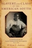 Andrews , Slavery and Class in the American South