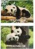 , Tekenblok Papyrus A4 panda