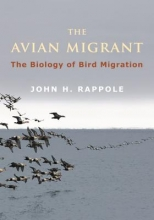 John H. Rappole The Avian Migrant