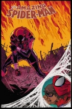 Slott, Dan,   Gage, Christos The Amazing Spider-Man 2