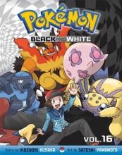 Kusaka, Hidenori Pokemon Black and White, Vol. 16