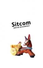 David McGimpsey Sitcom