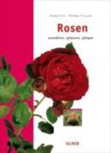 Eve, André Rosen