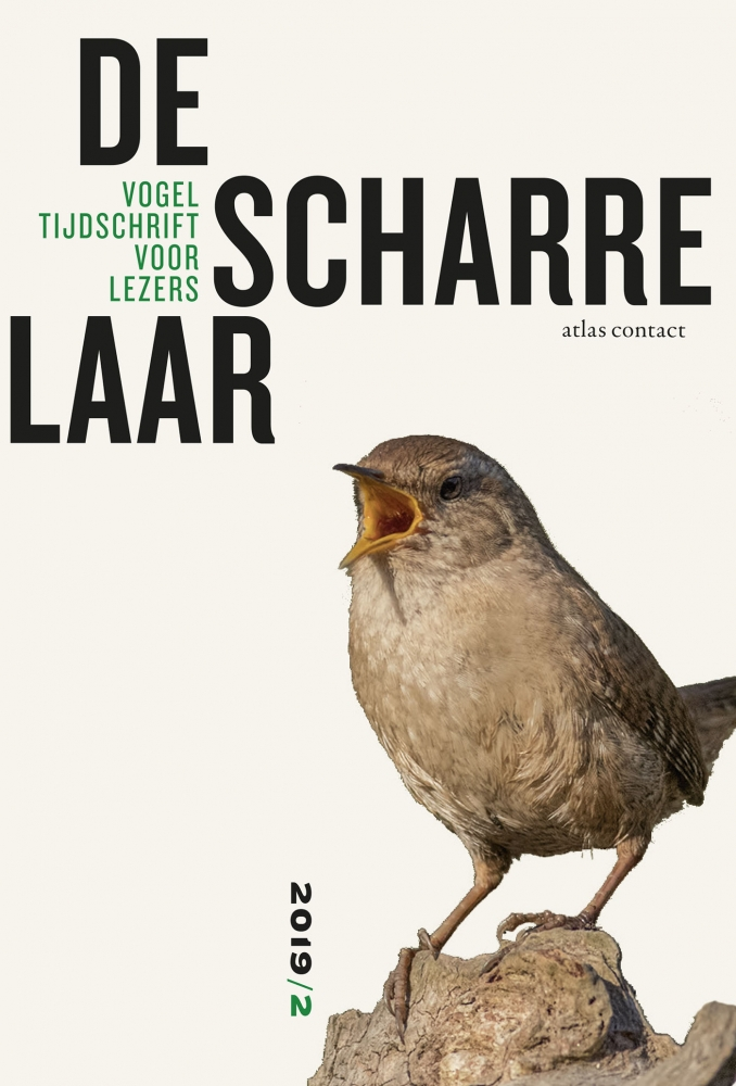 Diverse auteurs,De scharrelaar - 2019/2