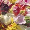 B-J  Challa,I love tulips celebrate spring