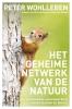 <b>Peter  Wohlleben</b>,Het geheime netwerk van de natuur