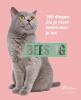 ,BEESTIG: katten