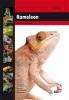 <b>F.J. Schonenberg</b>,Kameleon