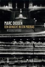 Marc  Didden Een gehucht in een moeras