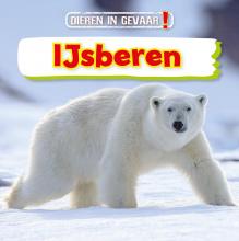 Nancy Dickmann , IJsberen