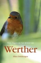Ellen Driebergen , Tien dagen uit het leven van Werther