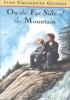 George, Jean Craighead,On the Far Side of the Mountain