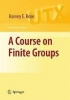 Rose, H. E.,A Course on Finite Groups