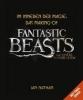 Nathan, Ian,Im Inneren der Magie: Das Making-of von Phantastische Tierwesen und wo sie zu finden sind