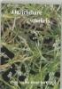 A. van der Heide-Kort, Ans van der Heide-Kort,Onzichtbare schakels