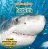 Camilla de la Bédoyère ,Mijn Kleine Boek Over Haaien
