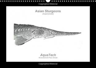 Paul Vecsei Asian Sturgeons (Acipenseridae): Fish as Art