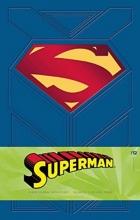 Wallace, Daniel Superman Hardcover Ruled Journal