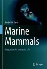 Randall W. Davis Marine Mammals