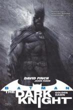 Finch, David Batman: the Dark Knight