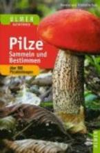 Volk, Fridhelm Pilze sammeln und bestimmen