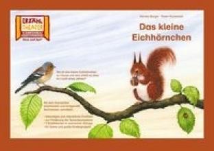 Burger, Monika Kamishibai: Das kleine Eichhörnchen