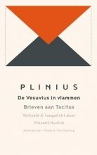 Plinius , De vesuvius in vlammen