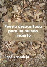 Pepe Cantalejo , Poesía desacertada para un mundo incierto