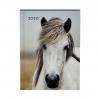 ,<b>Agenda 2020 Lannoo My favourite friends horse blauw</b>