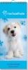 ,RACHAEL HALE SET verjaardagskalender Hond 2 5X7,95