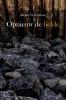 <b>Denis  Vercruysse</b>,Opnieuw de liefde