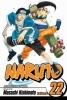 Kishimoto, Masashi, Naruto 22