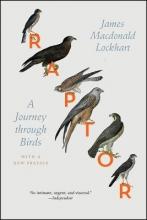 Lockhart, James Macdonald Raptor