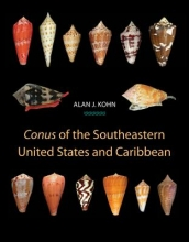 Alan J. Kohn Conus of the Southeastern United States and Caribbean