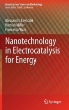Lavacchi, Alessandro Nanotechnology in Electrocatalysis for Energy