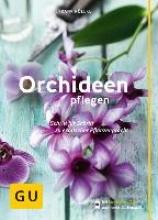 Röllke, Frank Orchideen pflegen