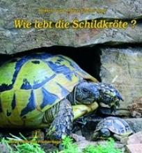 Fischer-Nagel, Andreas Wie lebt die Schildkröte?