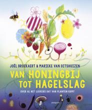 Joel Broekaert , Van honingbij tot hagelslag