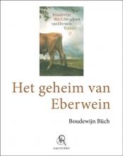 Boudewijn  Büch Het geheim van Eberwein (grote letter) - POD editie