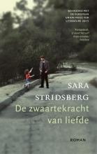 Sara  Stridsberg De zwaartekracht van liefde