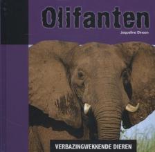 Jacqueline  Dineen Verbazingwekkende dieren Olifanten